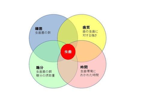 ニューブラウンの輪.jpg